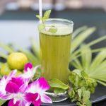 Mangosteen Ayurveda & Wellness Resort Yoga Retreat Phuket Thailand Life Drinks Mint Cooler